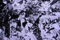 早稲田大学理工学術院の岩崎秀雄研究室では、「科学とアートのコラボレーション」が日々繰り広げられる。生命科学者であり造形美術家でもある岩崎さん。美大出身の作家を迎え、より特色あふれる研究室となった。