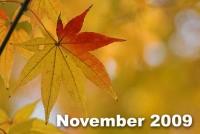 11月号は中国建国60周年、大師堂研究室に関する記事などをお届けします。